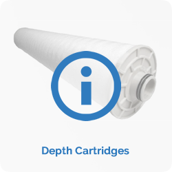 depthcartridges.fw